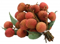 Litchis avion