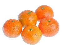 Clementines direct production
